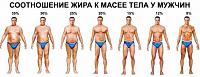 Нажмите на изображение для увеличения.  Название:Соотношение жира к массе тела у муж..jpg Просмотров:572 Размер:76.8 Кб ID:260328