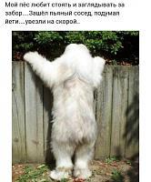 Нажмите на изображение для увеличения.  Название:podb_dnevnaya_02.jpg Просмотров:448 Размер:127.1 Кб ID:314590