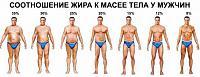 Нажмите на изображение для увеличения.  Название:Соотношение жира к массе тела у муж..jpg Просмотров:511 Размер:76.8 Кб ID:260328