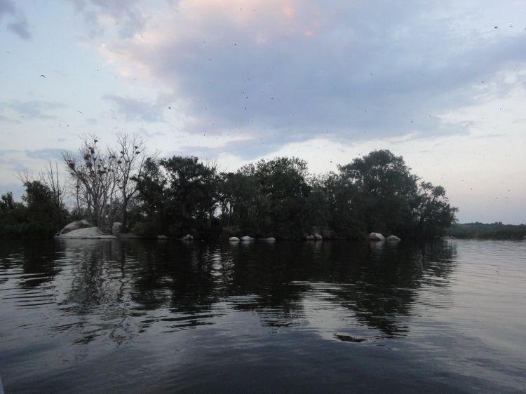 Маленький остров Козлов в 30 км от Днепропетровска, где отдыхал этим летом