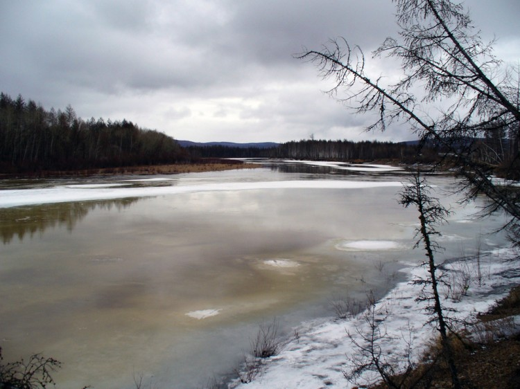 Скоро пойдет ледоход на реке Тында